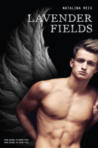 Lavender Fields Cover